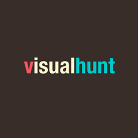 Logo VisualHunt